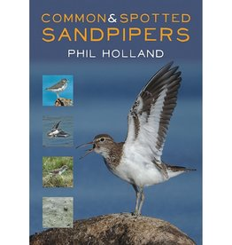 Common & Spotted Sandpipers