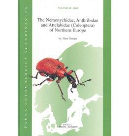 The Nemonychidae, Anthribidae and Attelabidae (Coleoptera) of Northern Europe