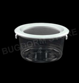 Bugdorm BDPN12 Pint-sized Insect Pot with Snap Lid