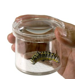 Bugdorm DP0240 Loeppot voor insecten