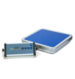 Pesola All-Purpose Platform Scale PFS30K