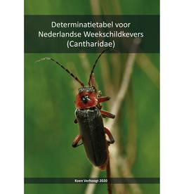 Determinatietabel voor Nederlandse Weekschildkevers