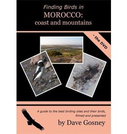 Finding Birds in Morocco: coast and mountains DVD