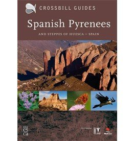 Crossbill Guide Spanish Pyrenees