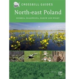 Crossbill Guide North-east Poland