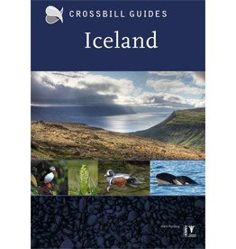 Crossbill Guide Iceland
