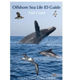 Offshore Sea Life ID Guide - East Coast