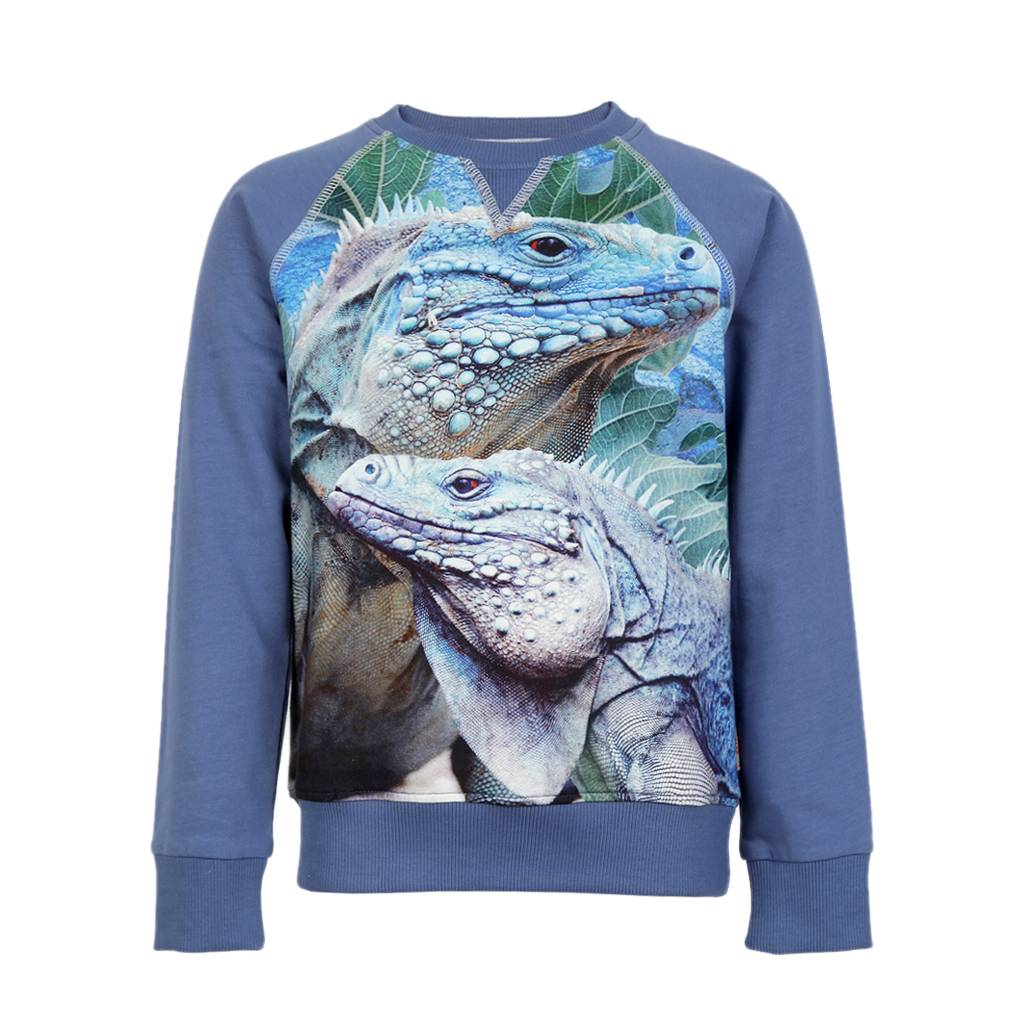 sweater Jake iguana