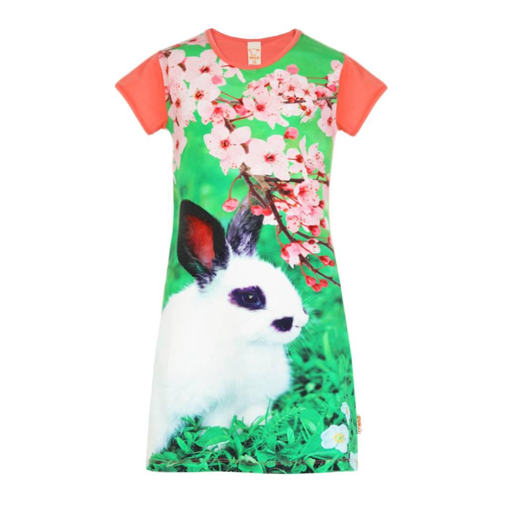 dress Mini rabbit