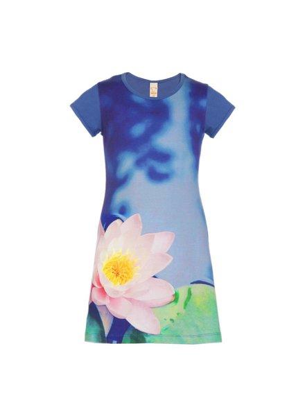 jurkje Mini waterlily