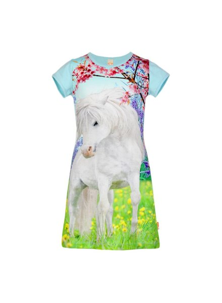 jurkje Mini white pony