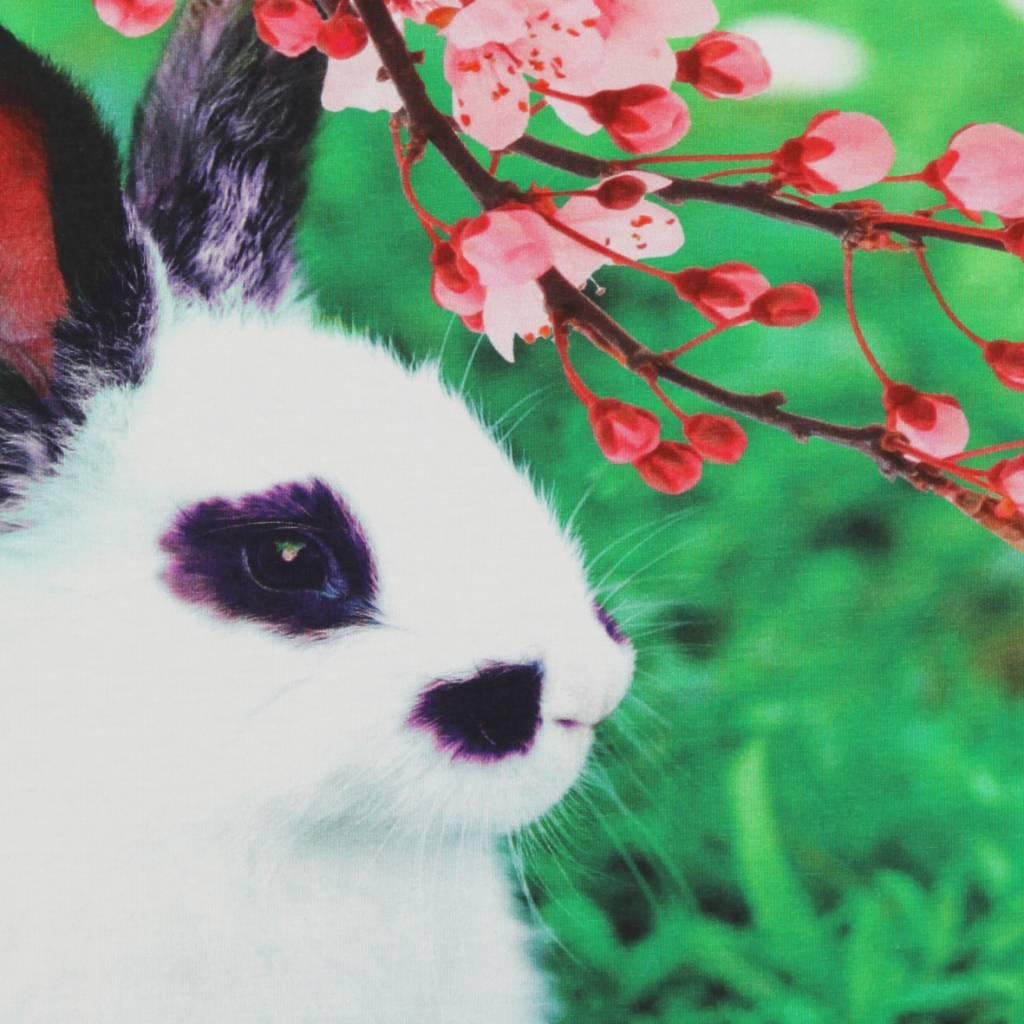 t shirt Party rabbit