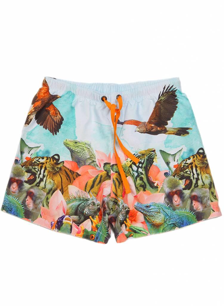 swim shorts Surfy animal valley