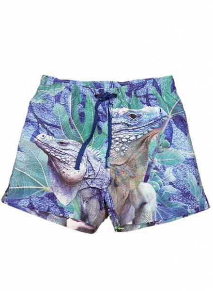swim shorts Surfy iguana