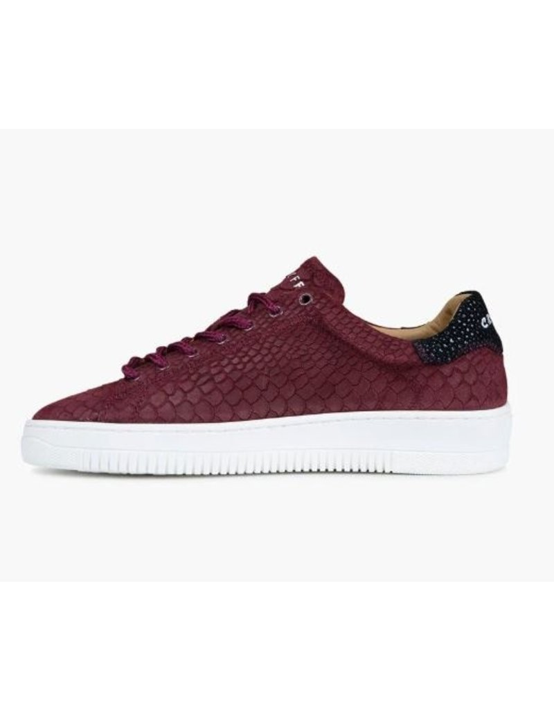 Cruyff Cruyff Joan bordeaux sneakers heren (S)