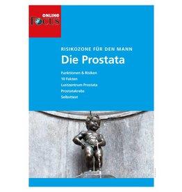 FOCUS Online Die Prostata