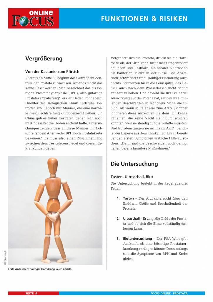 FOCUS Online Die Prostata - Risikozone für den Mann