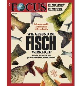 FOCUS Magazin Wie gesund ist Fisch wirklich?