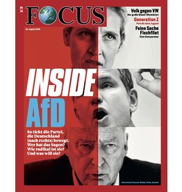 FOCUS Magazin Inside AfD