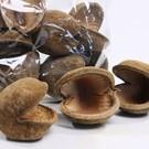 Onlineaquarium spullen Boeddha Nut 8-12cm