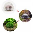 Onlineaquarium spullen Moss dome