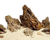 Steine & Pflanzen auf Steinen