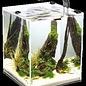 Aquael Aquael Leddy Smart Plant zwart V2 - 6 watt