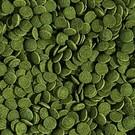 Mini wafels spirulina