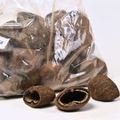 Onlineaquarium spullen Cocos pods 6-8cm