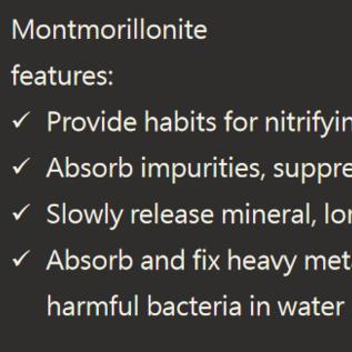 SL-aqua SL-aqua Montmorillonite stenen