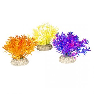 Kunstplant Glosso Colored - Hoogte 9 cm