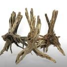 Onlineaquarium spullen Trunk Tree