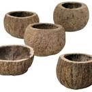 Onlineaquarium spullen Halve kokosnoot 8-10cm