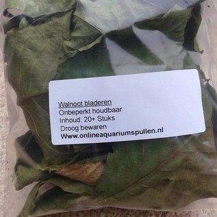 Onlineaquarium spullen Walnootbladeren