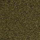 Onlineaquarium spullen Spirulina granulat