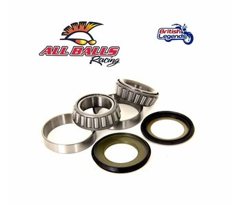 Fork Bearing Kit Kawasaki