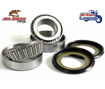 Fork Header Bearings