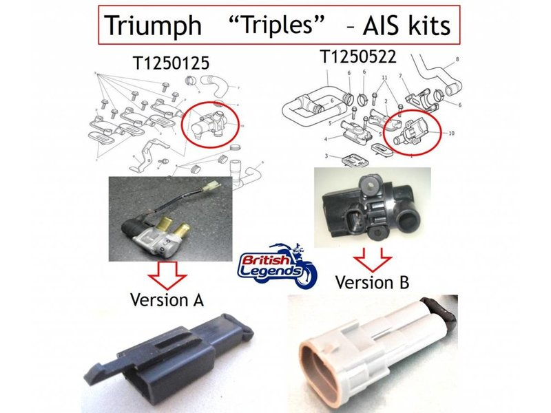 SmartMoto Air Injection Removal Kit for Triumph 955/1050cc