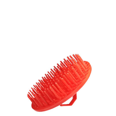 Shower Beard Brush