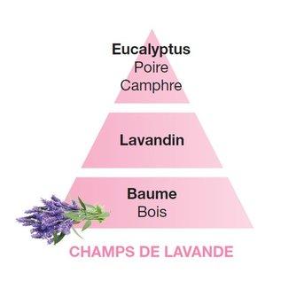 Lampe Berger Huisparfum Champs de Lavande