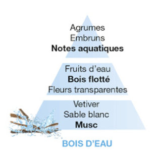 Lampe Berger Huisparfum Bois d'Eau