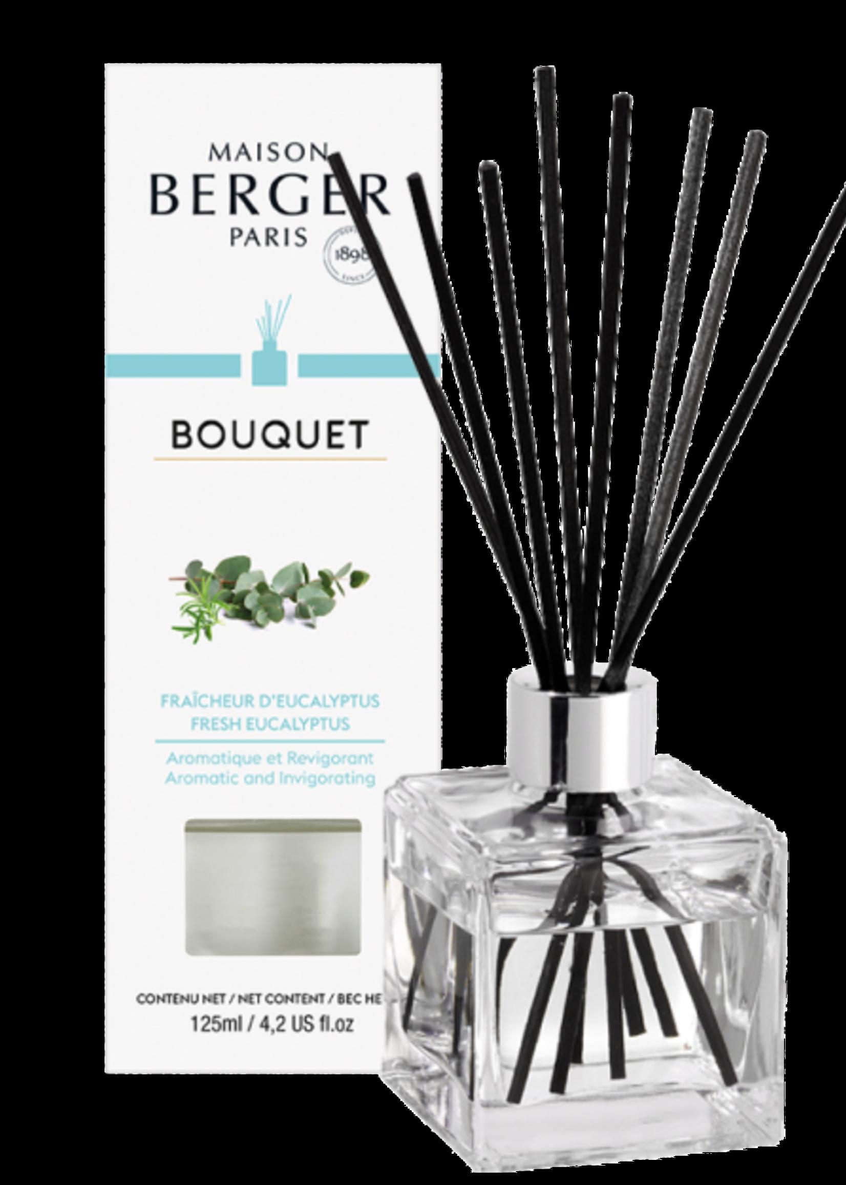 Parfum de Berger Parfumverspreider Cube Fraîcheur d'Eucalyptus