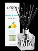 Parfum de Berger Parfumverspreider Cube Zeste de Verveine
