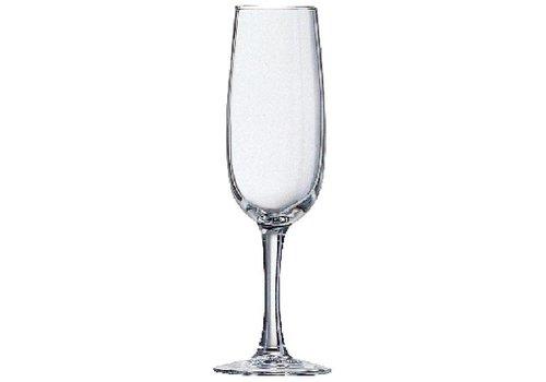 Arcoroc Elisa Champagne Glasses 16CL | 24 pieces