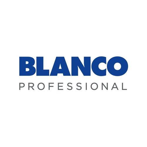 Blank Professional
