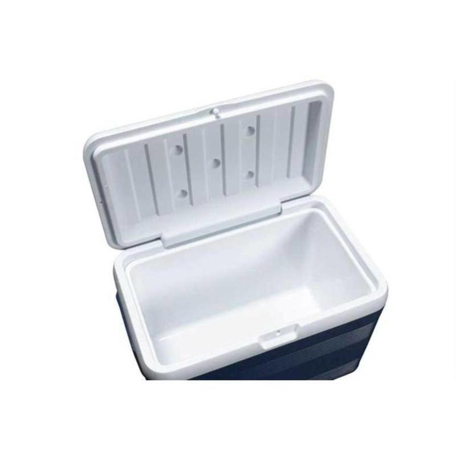 Professional Cooler box Isothermal Container 50 liters