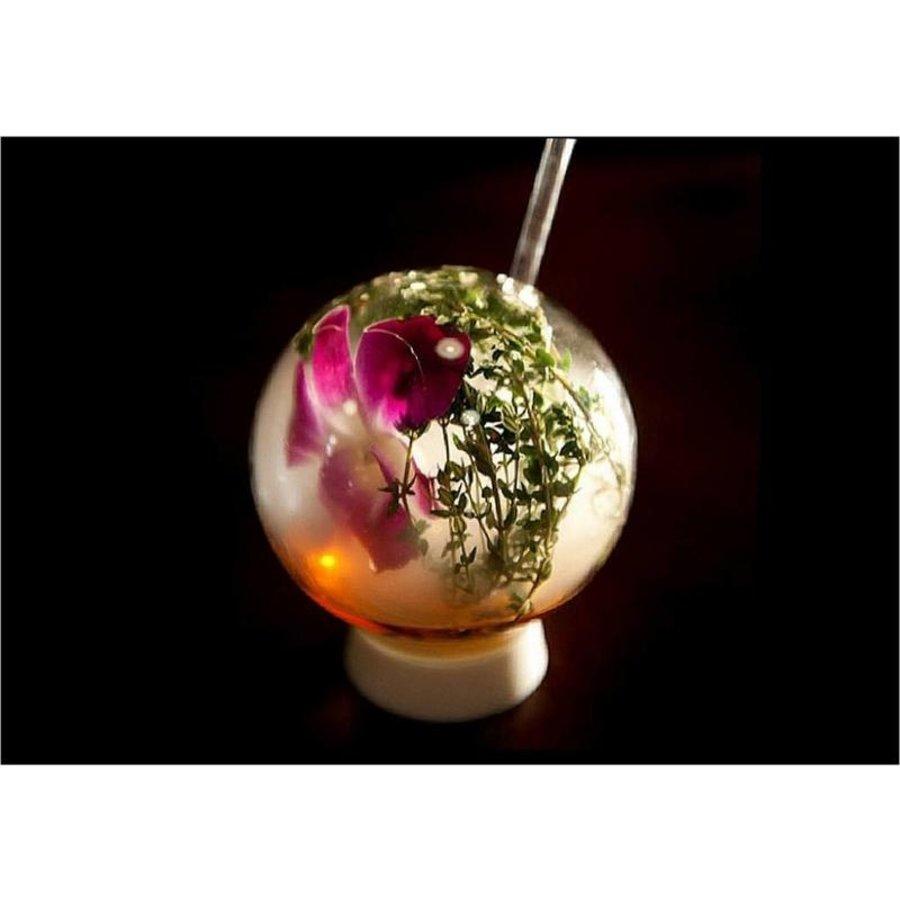 Cocktail Glas | 300ml | Incl. Glazen rietje
