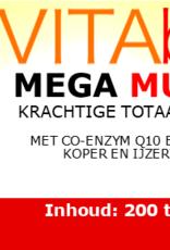 Vitabus MegaMulti 200 tabletten