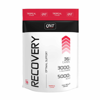 QNT recovery drank tropical (750g)