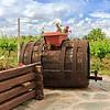 Popov Winery Vranec Reserve - Tikvesh, Noord-Macedonië